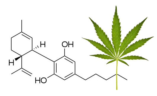 Dixie 18 Cannabidiol Oil